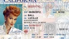 美国驾车需备文件