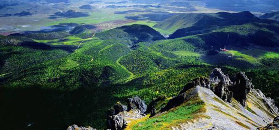 Napa Valley   纳帕谷的自然生态公园——徒步爱好者胜地